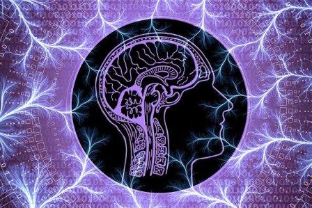 aktivnost-mozga