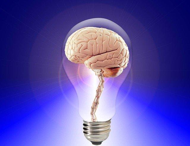 kak-povisit-aktivnost-mozga