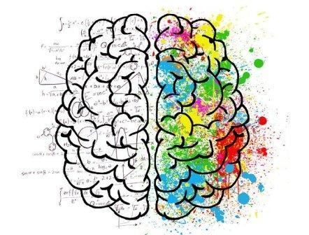 kak-povisit-mozgovyu-aktivnost